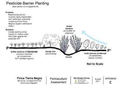 Tierra Negra Pesticide Barrier Planting