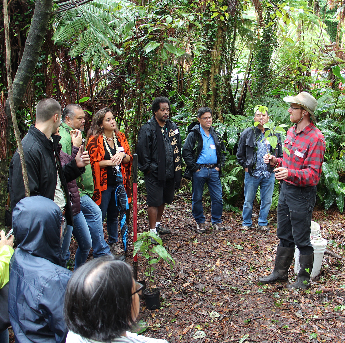 agroforestry workshop